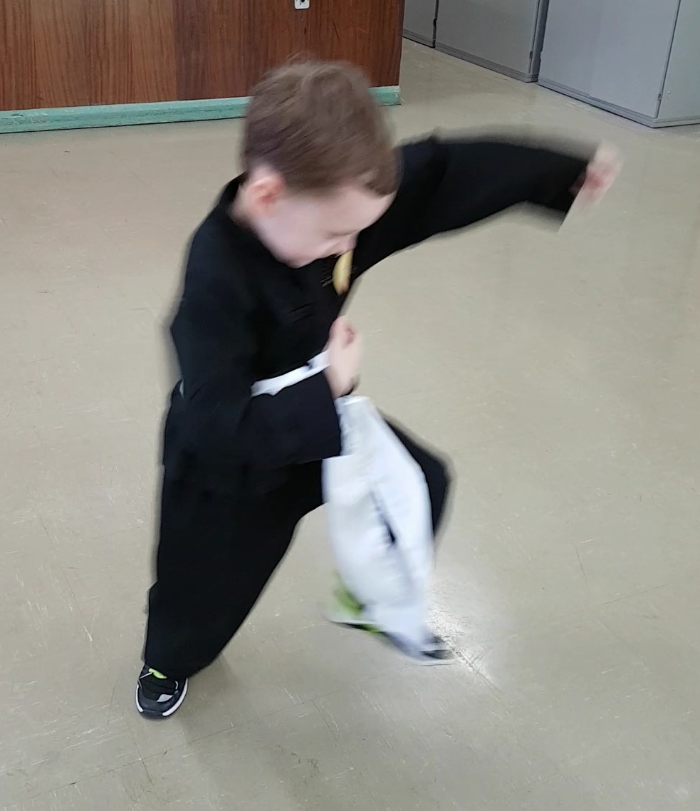 Young Masters Kung Fu